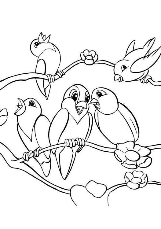 Five Birds Cute Coloring Pages Joselin Pinterest Bird Adult