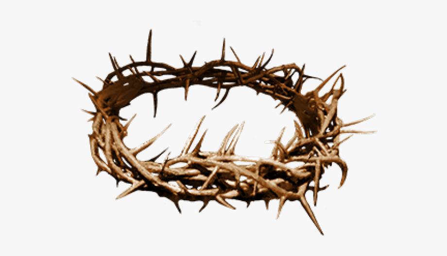 Thorns Jesus Thorn Crown Png Crown Of Thorns Crown Png Jesus Crown