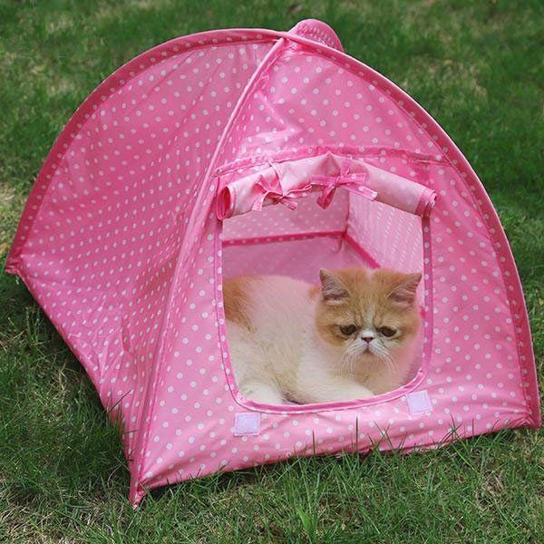 Foldable Indoor/Outdoor Cat Tent u2013 Your Pet Wish & Foldable Indoor/Outdoor Cat Tent u2013 Your Pet Wish | Cat Accessories ...