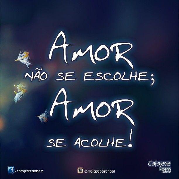 Amor Marco Paschoal Frases Pensamentos Amor Poesia