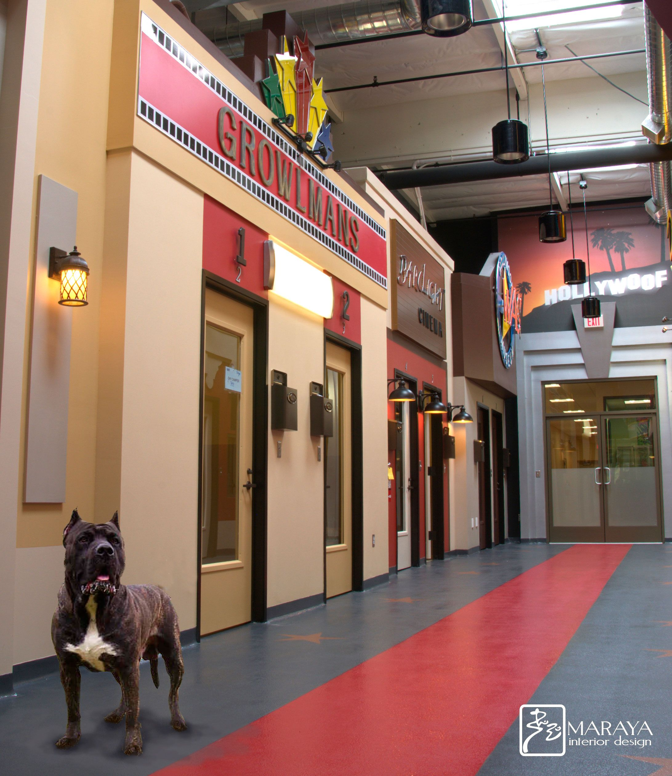 Pet Spa Design Hollywood style for dogs by Maraya Interior