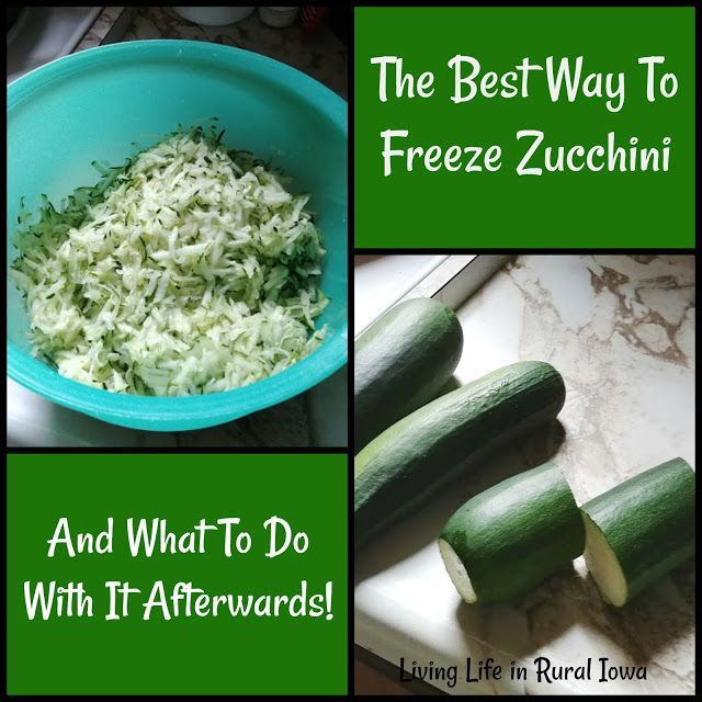 The Best Way To Freeze Zucchini And What To Do With It 400 x 300