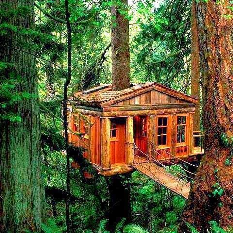 Want one.  Don't know why.  It's not like I'm the redneck, roughing it, Paul Bunyan type (although I do have a beard and wear flannel)...I just think it would be cool.  Until the first spider showed up...then I'd have to burn down the forest.