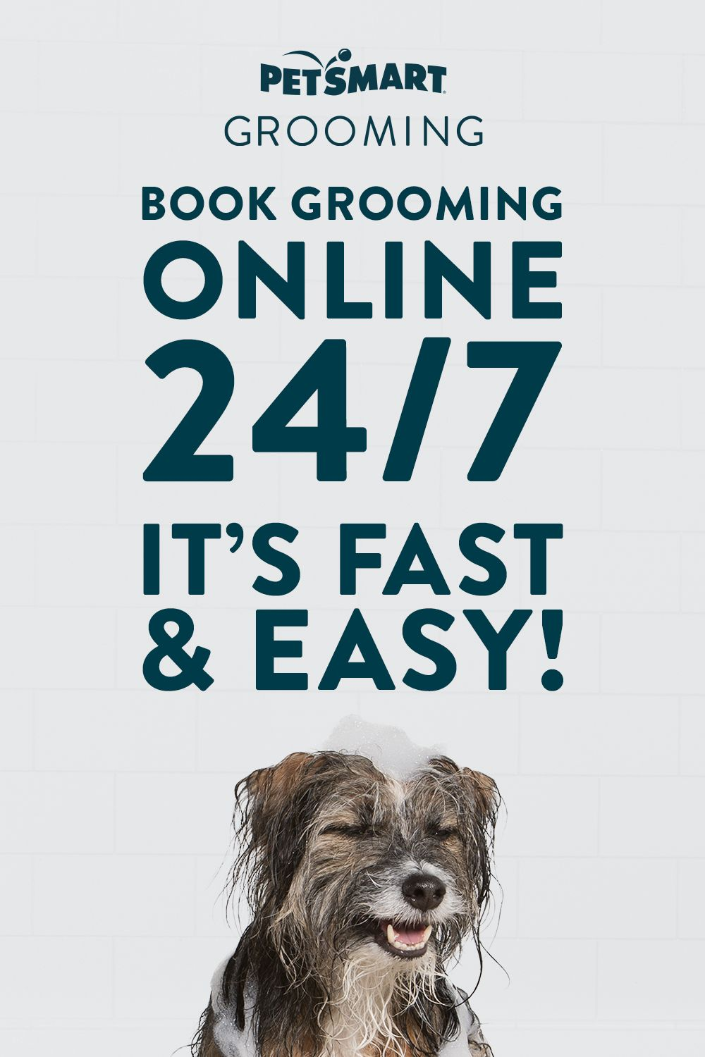 Need A Bath Or Groom It S Fast And Easy To Book Online Make Your