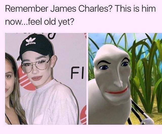 Pinterest Rainahmariee Really Funny Memes Funny Relatable Memes Charles Meme