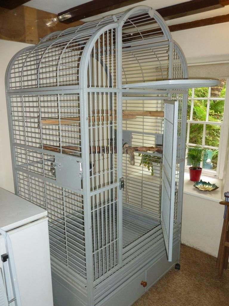 bird cages for sale used | pets | Pinterest | Bird cages ...