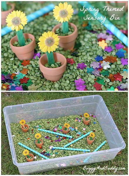 Sensory Bin for Spring~ Buggy and Buddy
