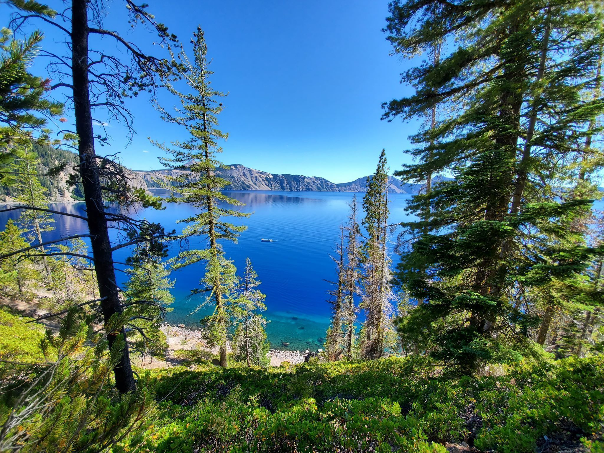 Crater Lake, Oregon  Aug 2019 2048 x 1536 - Nature/Landscape Pictures #craterlakeoregon Crater Lake, Oregon  Aug 2019 2048 x 1536 - Nature/Landscape Pictures #craterlakeoregon Crater Lake, Oregon  Aug 2019 2048 x 1536 - Nature/Landscape Pictures #craterlakeoregon Crater Lake, Oregon  Aug 2019 2048 x 1536 - Nature/Landscape Pictures #craterlakeoregon Crater Lake, Oregon  Aug 2019 2048 x 1536 - Nature/Landscape Pictures #craterlakeoregon Crater Lake, Oregon  Aug 2019 2048 x 1536 - Nature/Landscape #craterlakeoregon