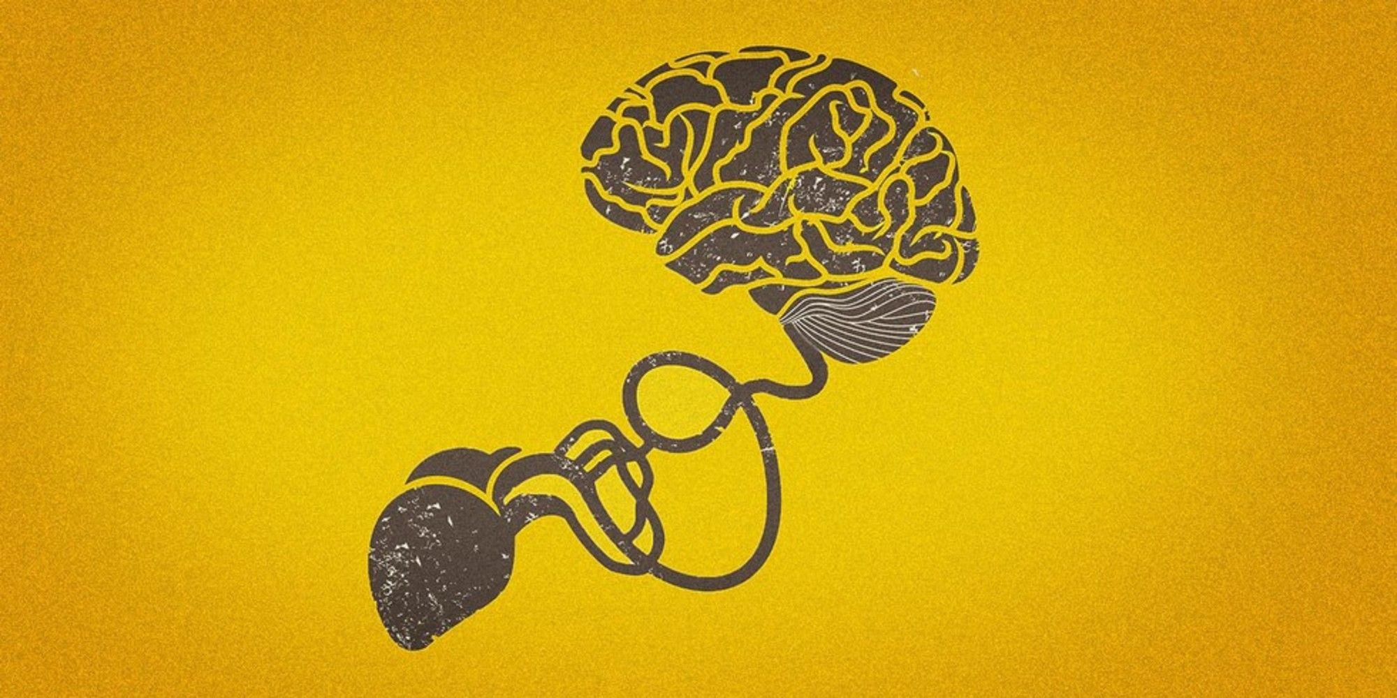 How bodily signals affect the brain brain neuroscience