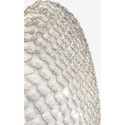 Photo of Designer- Wandleuchte Tati von Arturo Alvarez 40x40cm in Grau Tati Ta06g greyWohnlicht.com