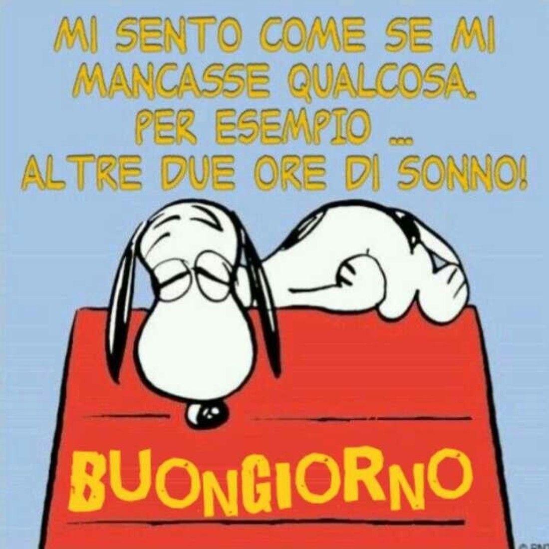 immagini buongiorno spiritose (3)   Buongiorno, Snoopy, Buongiorno immagini