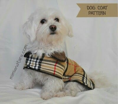 Dog coat | Sewing Tutorials For Pets | Pinterest | Dog