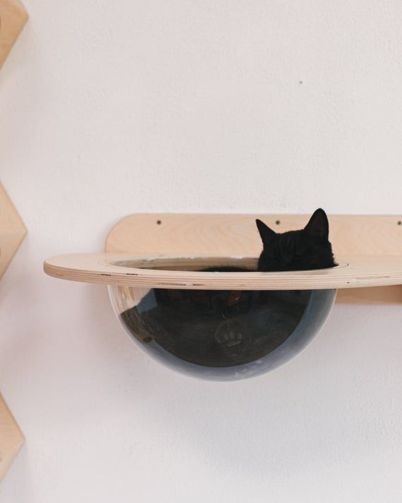 Photo of Items similar to Dolphin furniture Cat house Natural kitten house Place to sleep cat Bed for cat Pet gift Cat shelf Cat wall home Cat Supplies  Cat place on Etsy