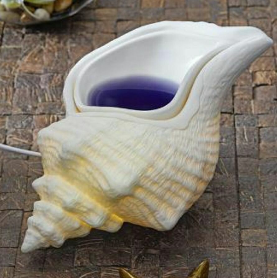 Beautiful Conch Shell Warmer. Get Yours At Partylite.biz/melisah New Item!