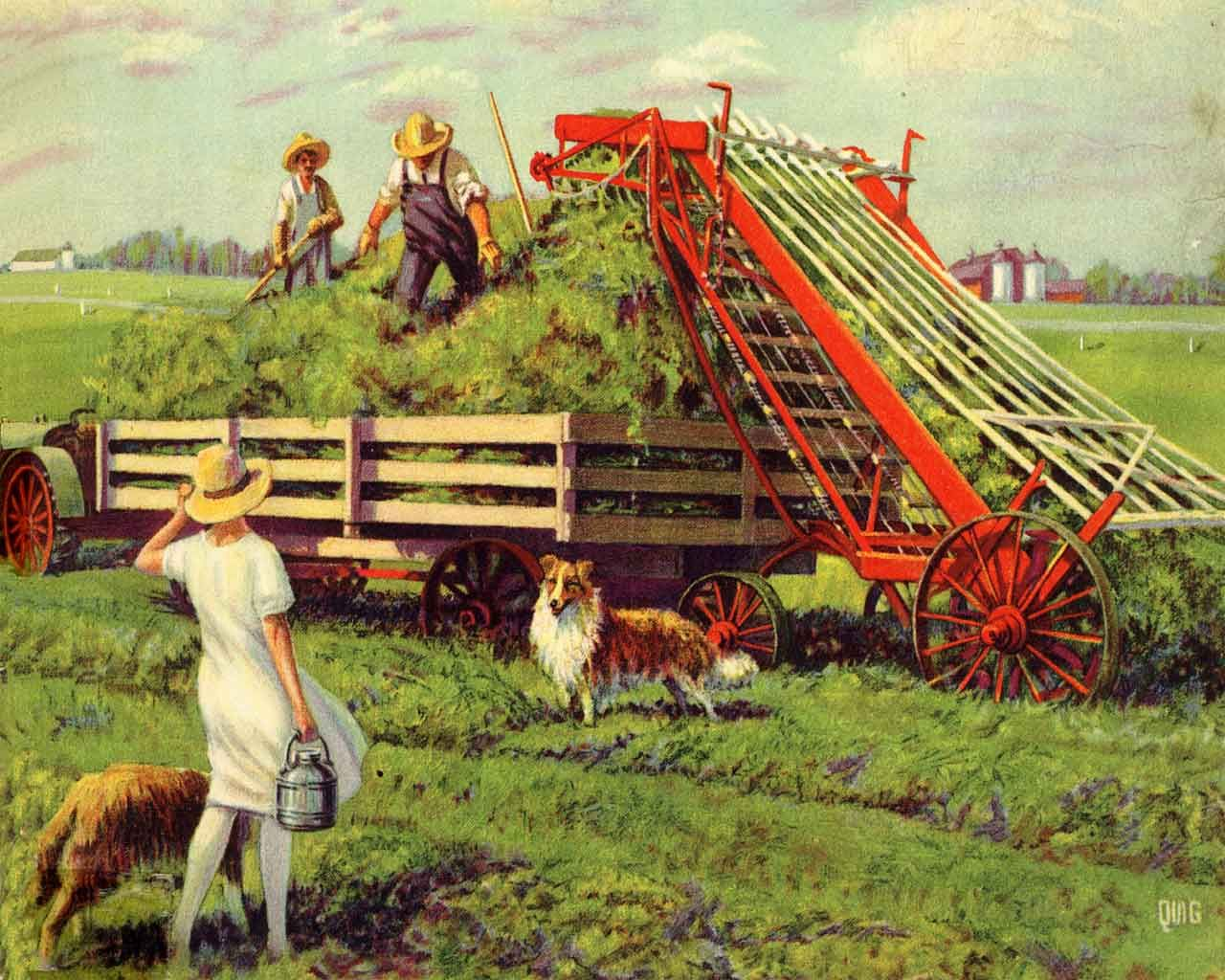 Image result for farming