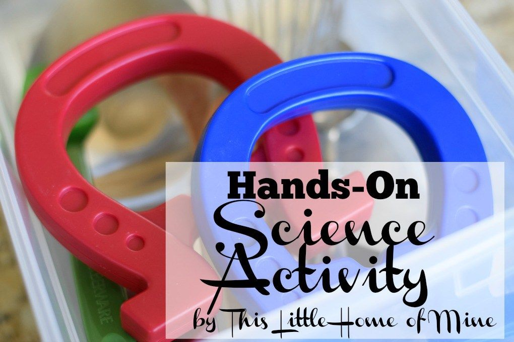 Hands-On Science: Magnet Sensory Bin