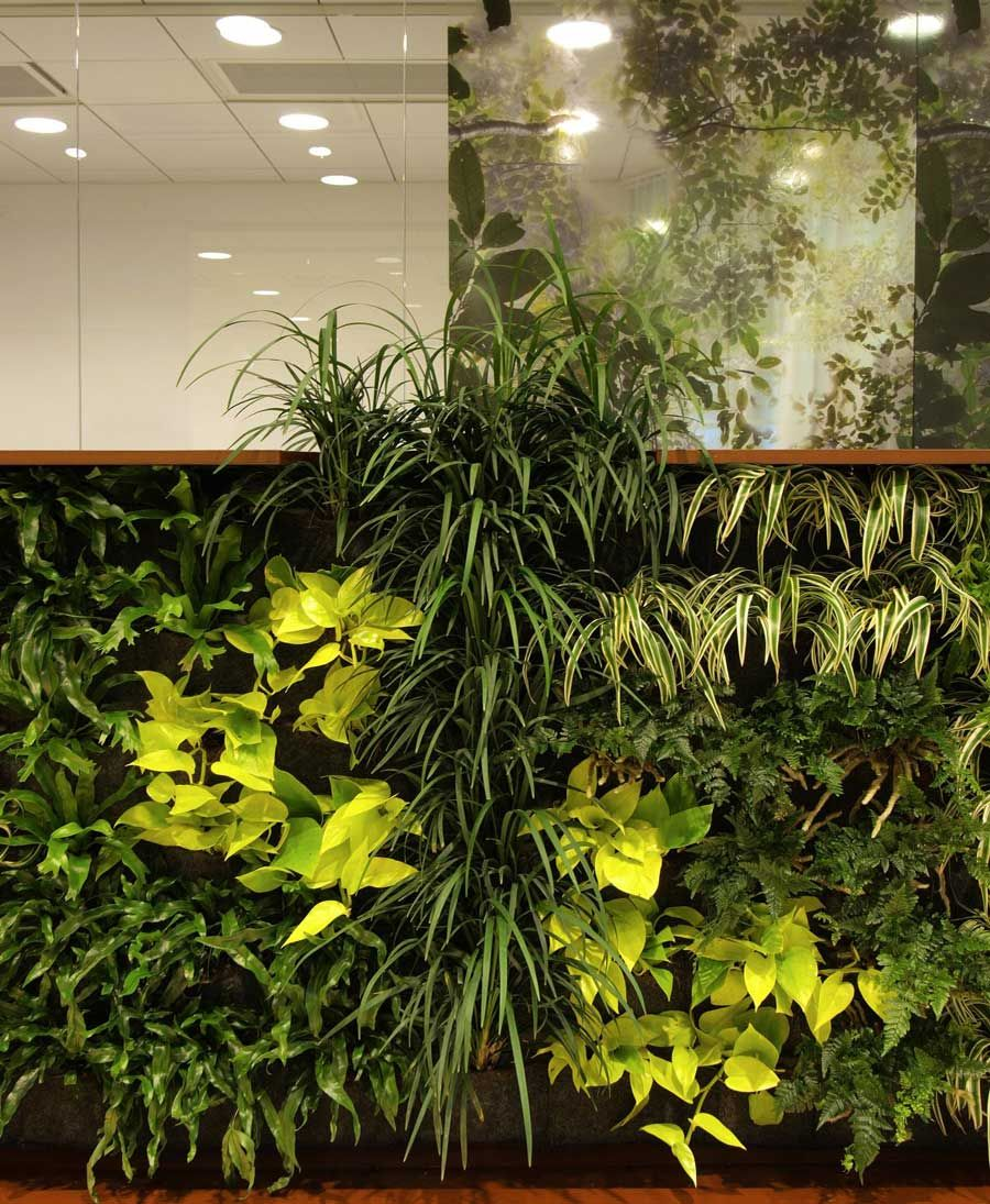 Decorating With Plants Indoors Indoor Plant Wall House