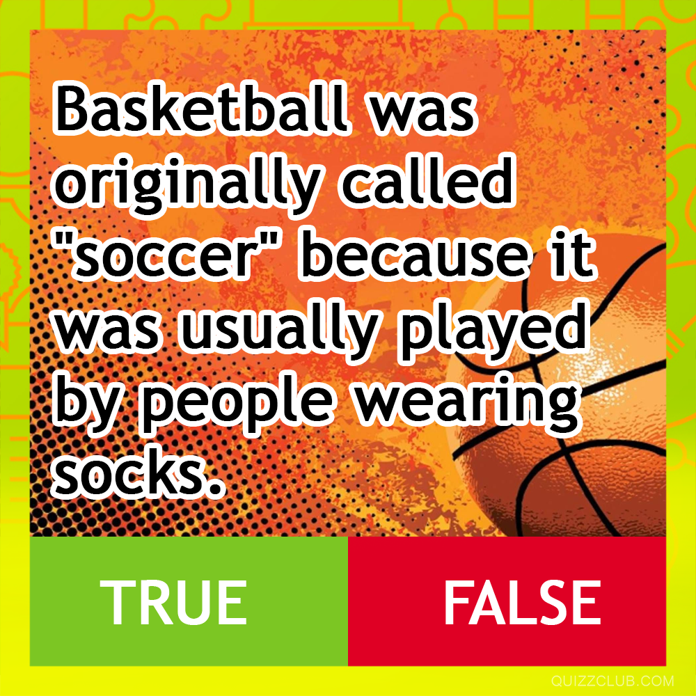 Fun Trivia Questions Quizzes And Personality Tests Fun Facts Facts True
