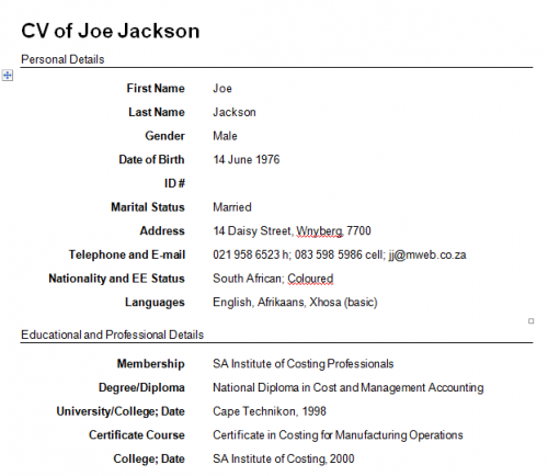 Professional One Page Resume  See Wee Woo    Sample