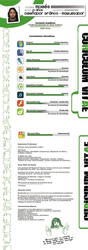 16 Infographic Resumes, A Visual Trend - Blog About Infographics and