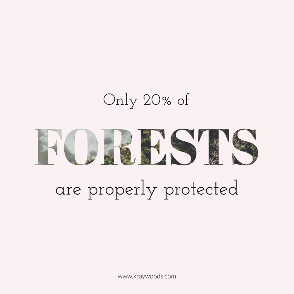 did you know? only 20% of forests are properly protected. make a