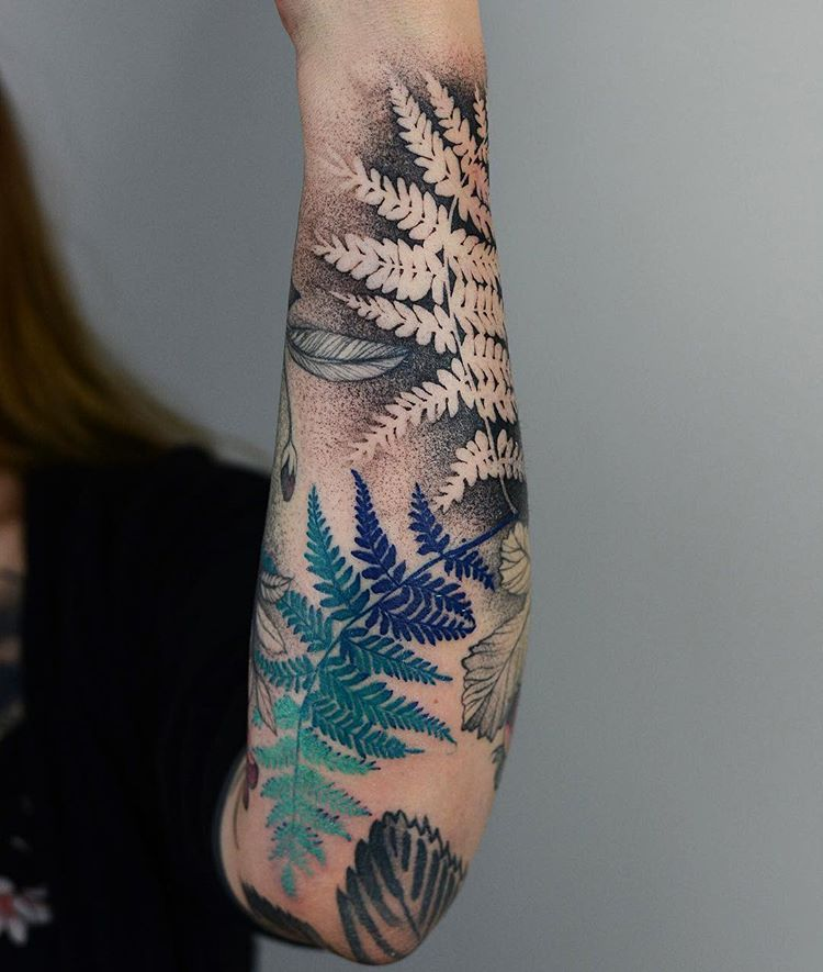 "Tattooer, Wroclaw, Poland on Instagram: ""Ferns in negative and colours 🌿🌿 @nasza_tattoo_shop #tattoo #ink #tattoos #fern #plant #forest #magic #wroclaw #poland #graphic #freehand"""
