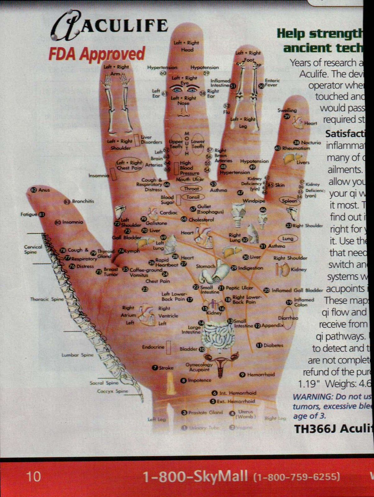 acupressure points - Yahoo Image Search Results ...