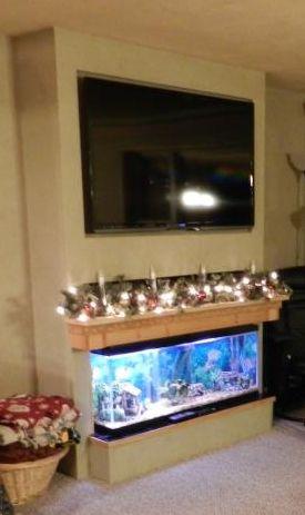 Wall Fish Tank Shelf