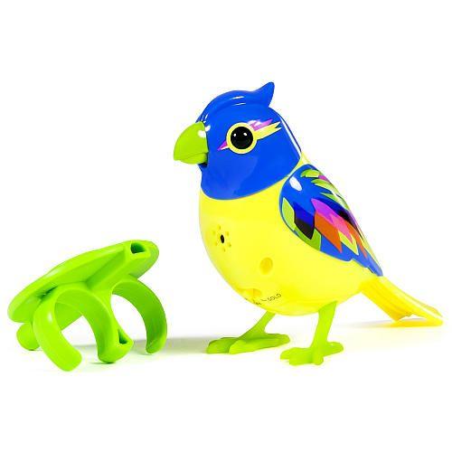 Digibirds Single Pack Brazil