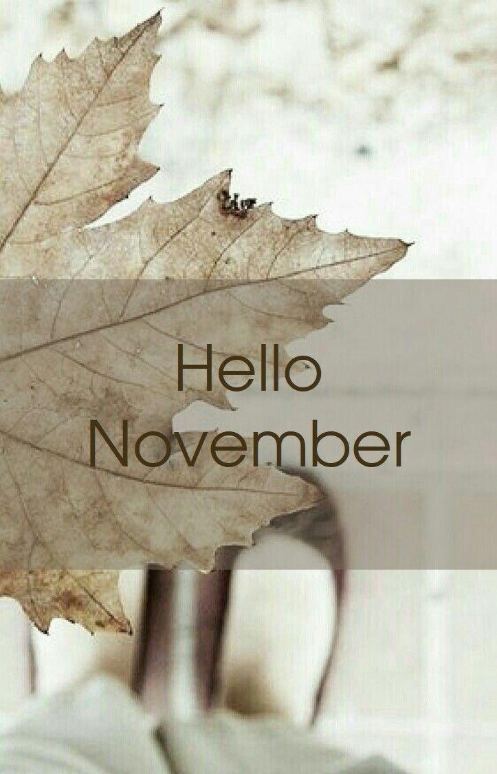 Hello November #hellonovemberwallpaper Hello November