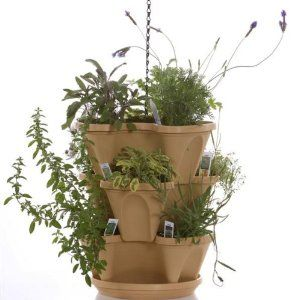 Another possible container for an herb garden