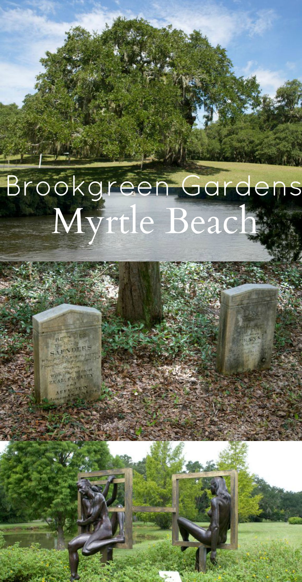 Myrtle Beach Attractions: Brookgreen Gardens | South carolina ...