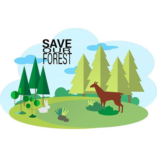 how can we save forest and wildlife