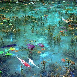 Monet 39 s pond seki city japan kunst leben im wasser und for Koi pond quezon city