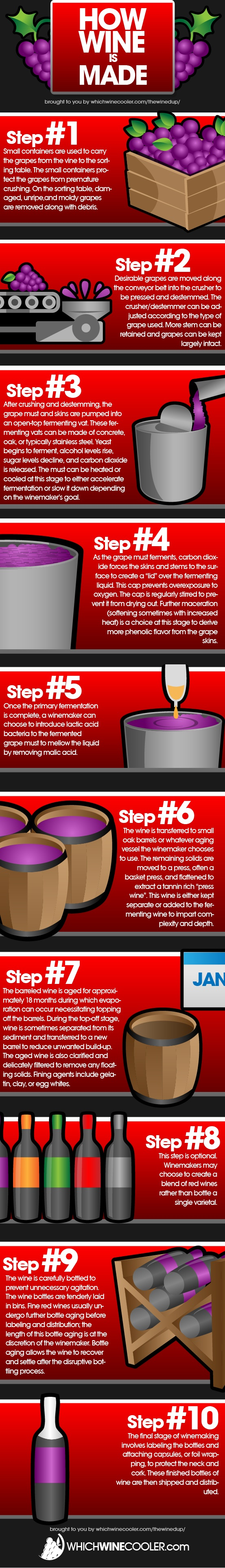 How To Make Red Wine In A 10 Step Infographic Wine Drinks Wine Facts Wine And Beer