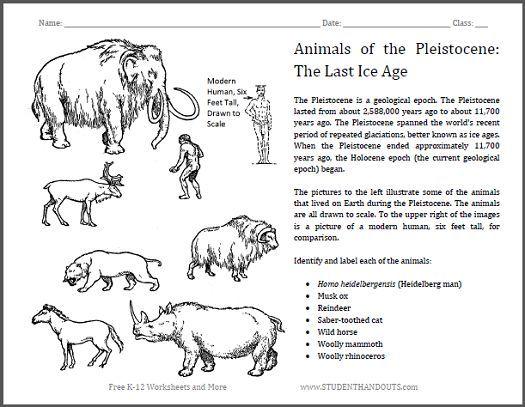 identify pleistocene epoch animals worksheet students in grades 4 and up identify common. Black Bedroom Furniture Sets. Home Design Ideas