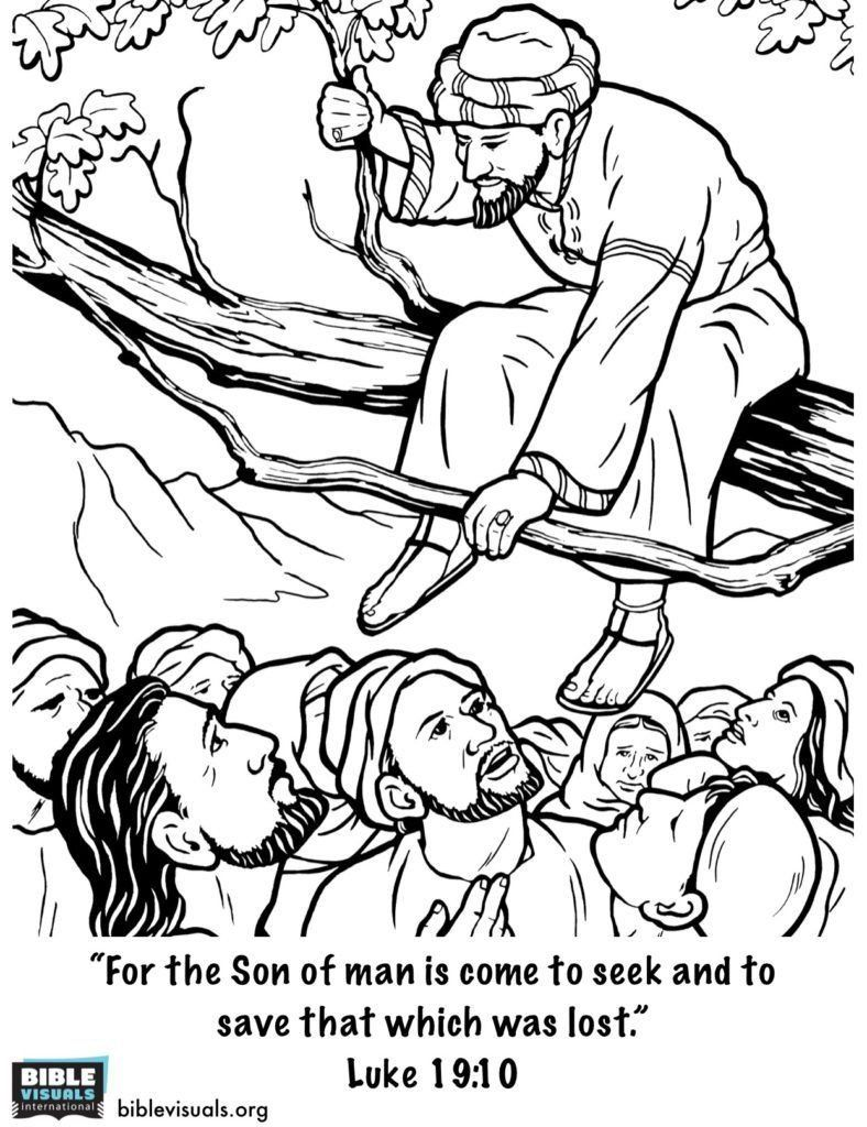Zacchaeus Free Coloring Pages Sketch Coloring Page Sunday School Coloring Pages Zacchaeus Bible Crafts