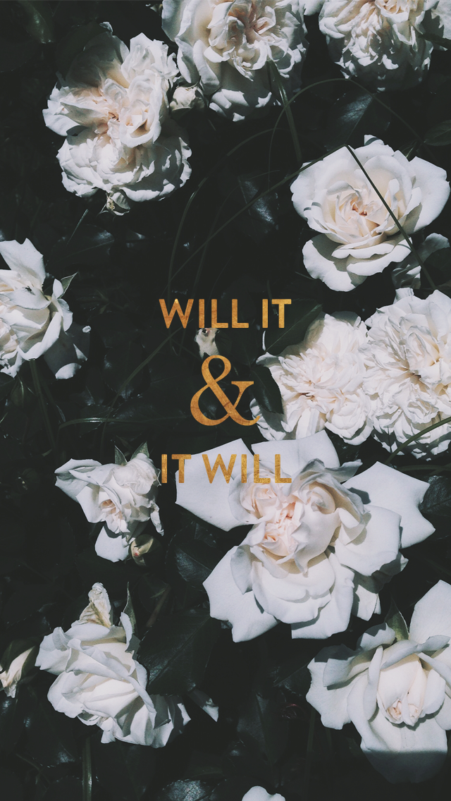 White roses floral Gold 'Will It' iphone background