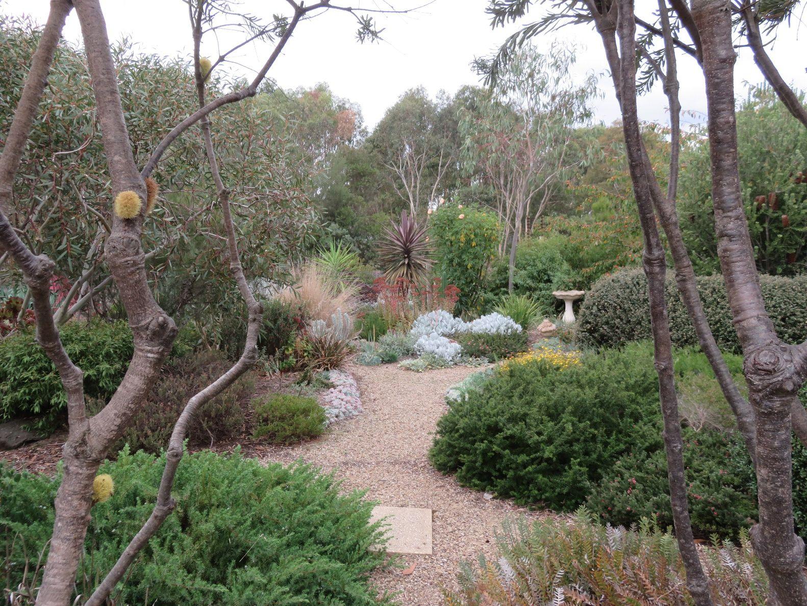 pin on australia garden