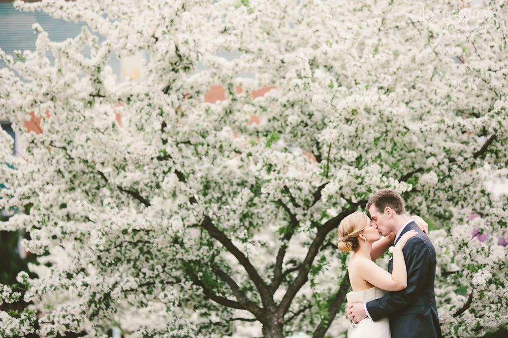 Sara Anthony Garden Wedding Wedding Wedding Photography