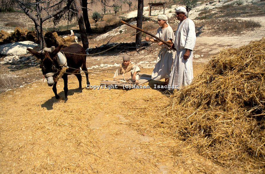 Threshing floor araunah said why has my lord the king for Threshing floor