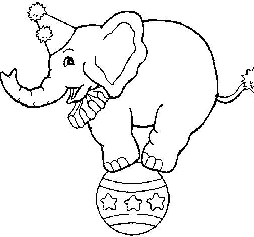 Elephant Balancing On A Ball Coloring Page Coloringcrew Com