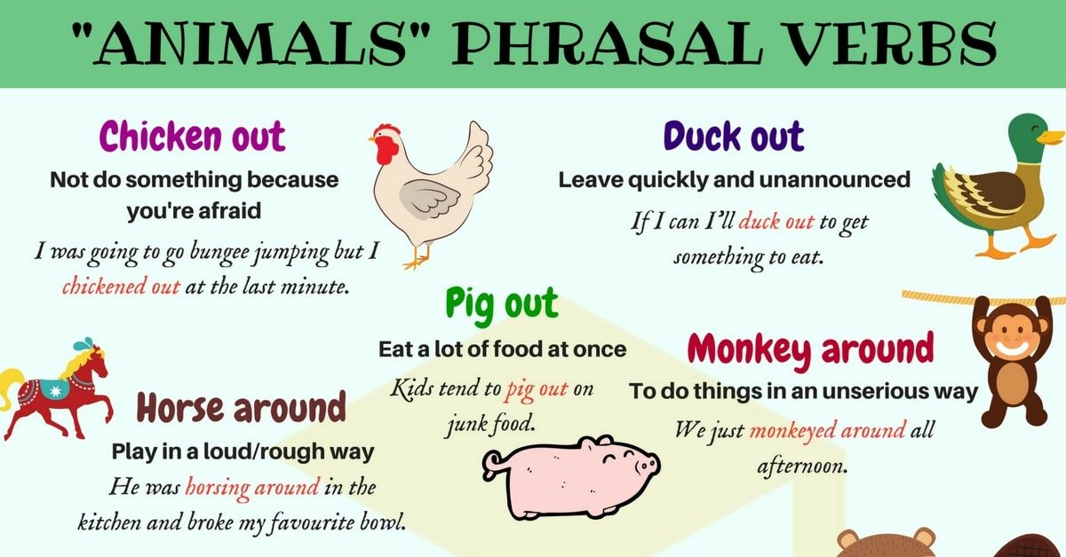 Aula De Inglês Aprender Phrasal Verbs In English Com: 20+ Useful Animals Phrasal Verbs In English