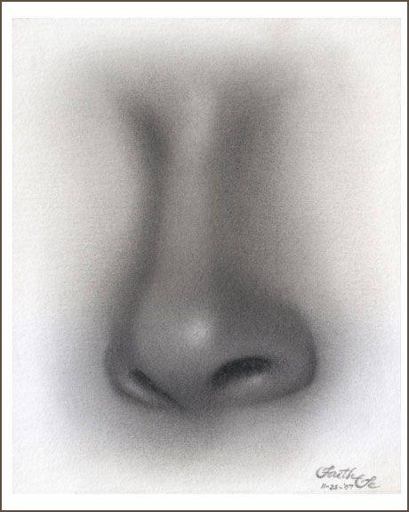 Graphite pencil drawing tutorial female nose
