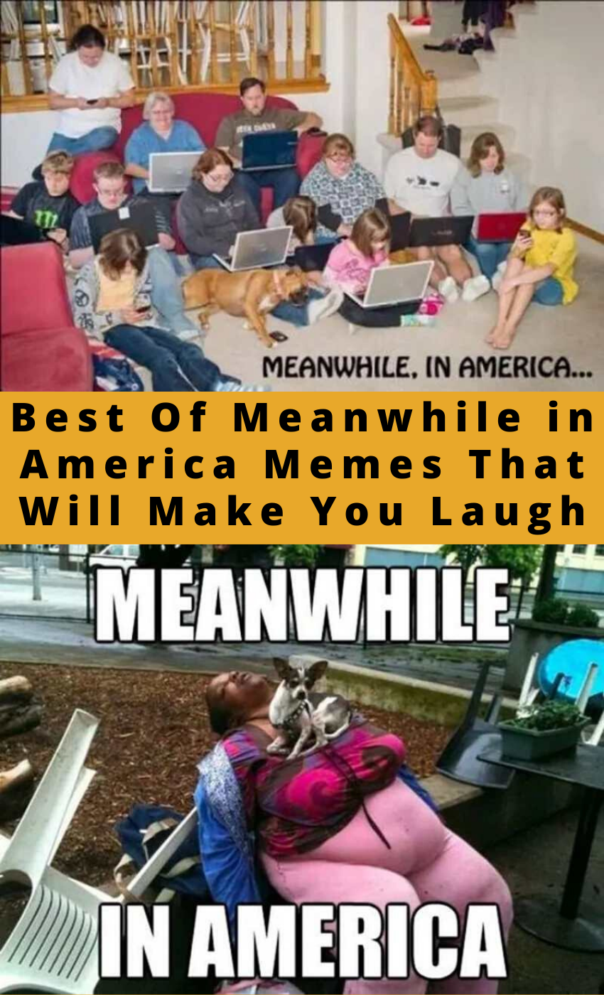 Best Of Meanwhile in America Memes That Will Make