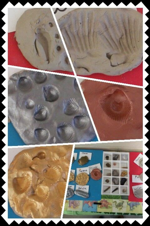 how to make dinosaur fossils with clay