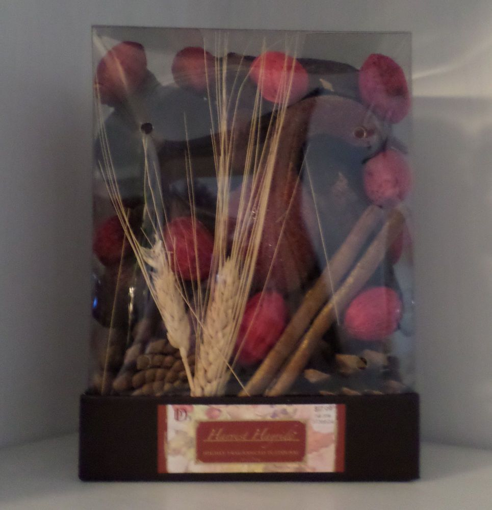 Fall holiday potpourri vase filler red brown gold pinecones fall holiday potpourri vase filler red brown gold pinecones cinnamon wood nip floridaeventfo Images
