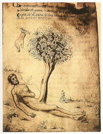 árvore: alquimia - Pesquisa Google