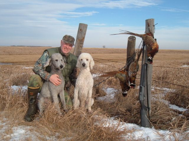South Dakota Pheasant Hunt Dec 05 With Gary Shown Here Beau