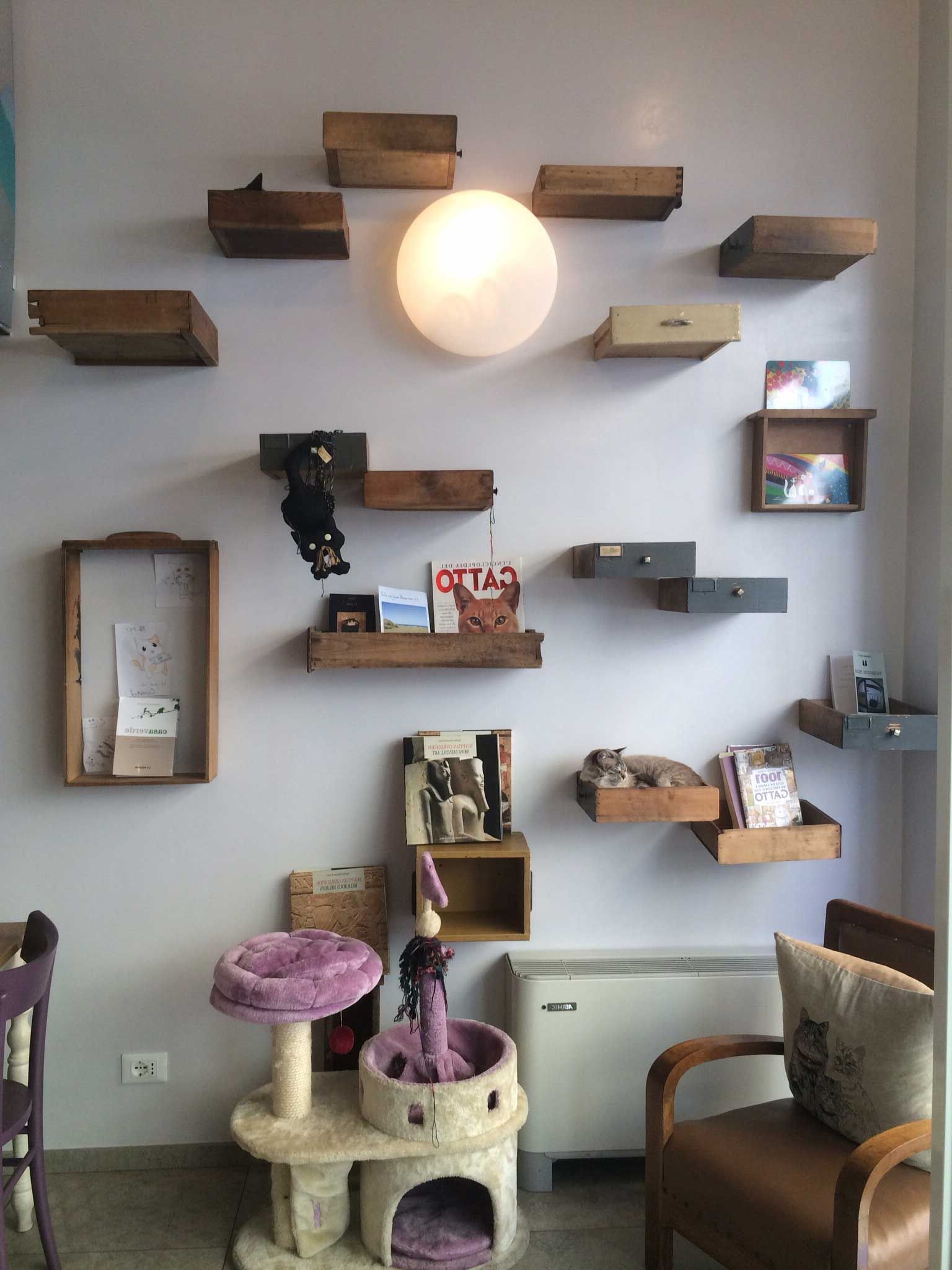Cat House Ideas With Tower And Many Shelves